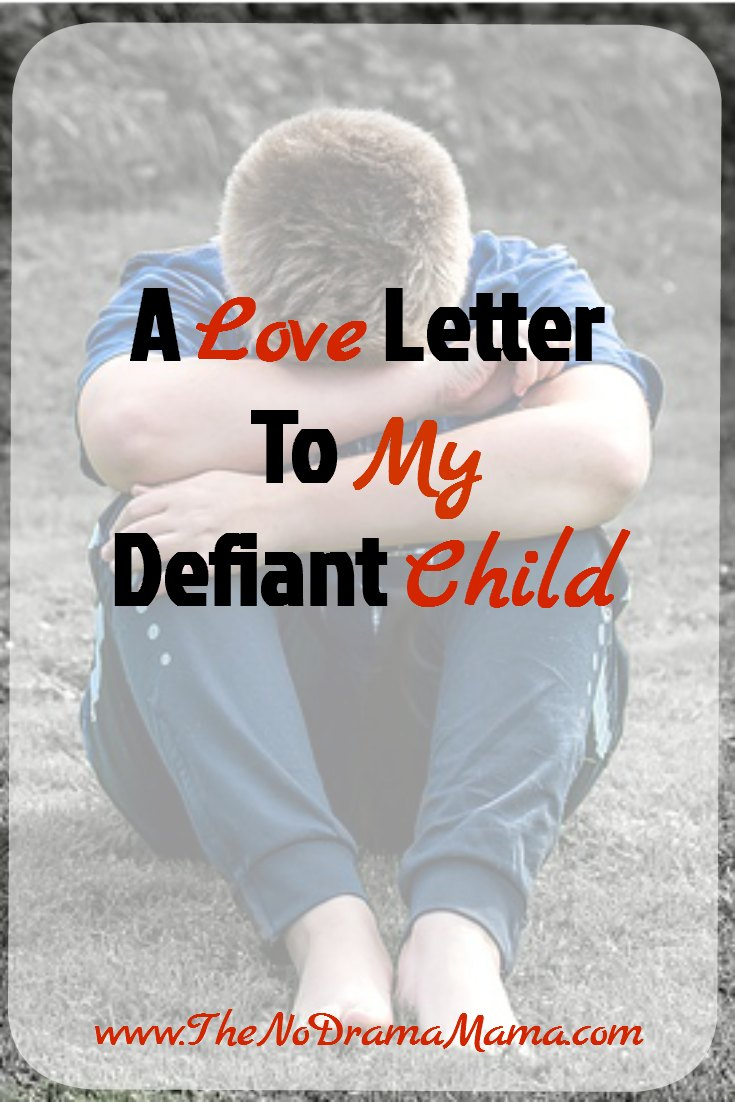 To My Defiant Child, Who Are You? - The No Drama Mama